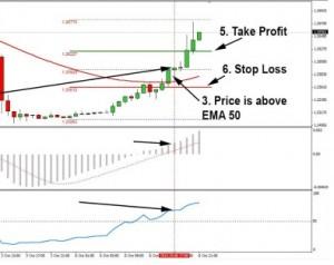 http://forexuz.com/wp-content/uploads/2014/11/Fortune-Trading-Scientifically-300x238.jpg